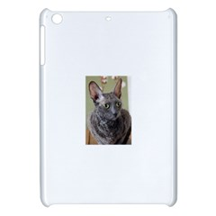 Cornish Rex, Blue Apple iPad Mini Hardshell Case