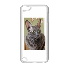 Cornish Rex, Blue Apple iPod Touch 5 Case (White)