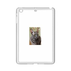 Cornish Rex, Blue iPad Mini 2 Enamel Coated Cases