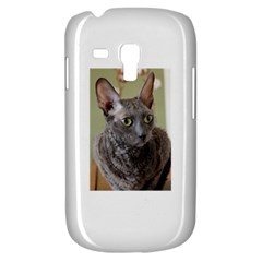 Cornish Rex, Blue Samsung Galaxy S3 MINI I8190 Hardshell Case