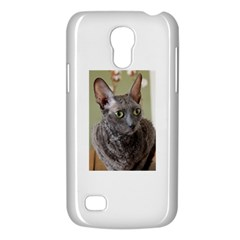 Cornish Rex, Blue Galaxy S4 Mini