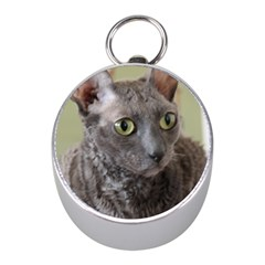 Cornish Rex, Blue Mini Silver Compasses