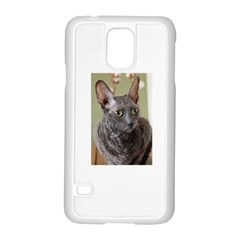 Cornish Rex, Blue Samsung Galaxy S5 Case (White)