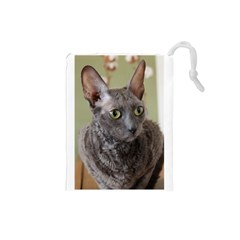 Cornish Rex, Blue Drawstring Pouches (Small)