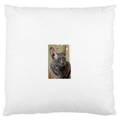 Cornish Rex, Blue Standard Flano Cushion Case (Two Sides)