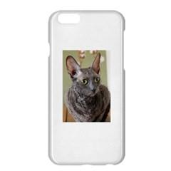 Cornish Rex, Blue Apple iPhone 6 Plus/6S Plus Hardshell Case