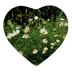 Wild Daisy Summer Flowers Heart Ornament (2 Sides)