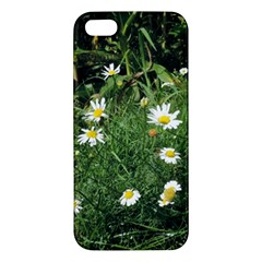 Wild Daisy Summer Flowers Iphone 5s/ Se Premium Hardshell Case