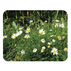 Wild Daisy Summer Flowers Double Sided Flano Blanket (large)