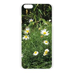Wild Daisy summer Flowers Apple Seamless iPhone 6 Plus/6S Plus Case (Transparent)