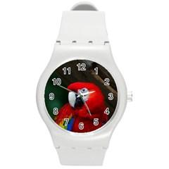 Scarlet Macaw Bird Round Plastic Sport Watch (M)