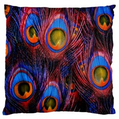 Pretty Peacock Feather Large Cushion Case (One Side)