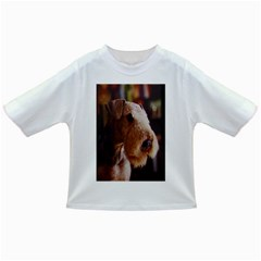 Airedale Terrier Infant/Toddler T-Shirts
