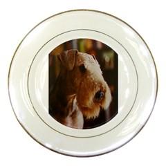 Airedale Terrier Porcelain Plates