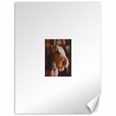 Airedale Terrier Canvas 12  x 16
