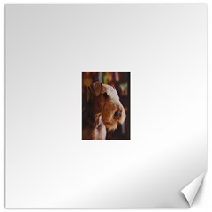 Airedale Terrier Canvas 16  x 16