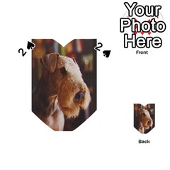 Airedale Terrier Playing Cards 54 (Heart)
