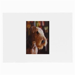 Airedale Terrier Large Glasses Cloth (2-Side)