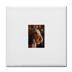 Airedale Terrier Face Towel