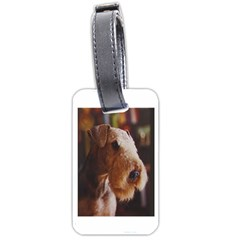 Airedale Terrier Luggage Tags (One Side)