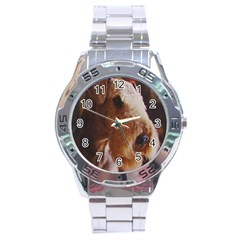 Airedale Terrier Stainless Steel Analogue Watch