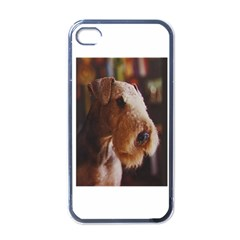 Airedale Terrier Apple iPhone 4 Case (Black)