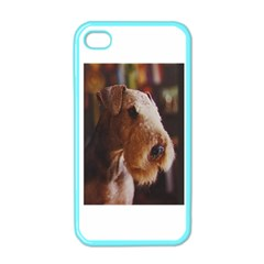 Airedale Terrier Apple iPhone 4 Case (Color)
