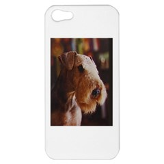 Airedale Terrier Apple iPhone 5 Hardshell Case