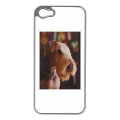 Airedale Terrier Apple iPhone 5 Case (Silver)