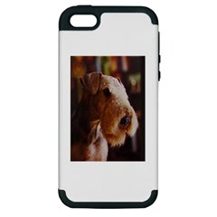 Airedale Terrier Apple iPhone 5 Hardshell Case (PC+Silicone)