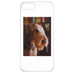 Airedale Terrier Apple iPhone 5 Classic Hardshell Case
