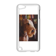 Airedale Terrier Apple iPod Touch 5 Case (White)