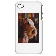 Airedale Terrier Apple iPhone 4/4S Hardshell Case (PC+Silicone)