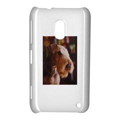 Airedale Terrier Nokia Lumia 620