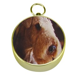 Airedale Terrier Gold Compasses