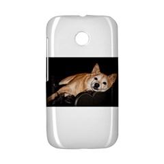 Shiba Inu Laying Motorola Moto E
