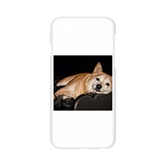 Shiba Inu Laying Apple Seamless iPhone 6/6S Case (Transparent)
