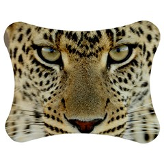 Leopard Face Jigsaw Puzzle Photo Stand (Bow)