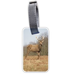 Red Deer Stag On A Hill Luggage Tags (one Side)
