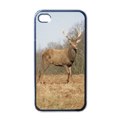Red Deer Stag on a Hill Apple iPhone 4 Case (Black)