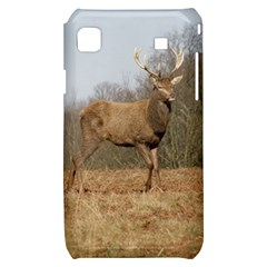 Red Deer Stag on a Hill Samsung Galaxy S i9000 Hardshell Case