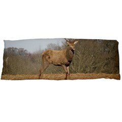 Red Deer Stag on a Hill Body Pillow Case (Dakimakura)