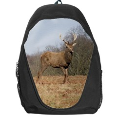 Red Deer Stag on a Hill Backpack Bag