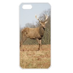 Red Deer Stag on a Hill Apple iPhone 5 Seamless Case (White)