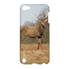 Red Deer Stag on a Hill Apple iPod Touch 5 Hardshell Case