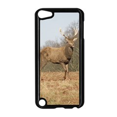 Red Deer Stag on a Hill Apple iPod Touch 5 Case (Black)
