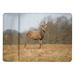 Red Deer Stag on a Hill Samsung Galaxy Tab 10.1  P7500 Flip Case
