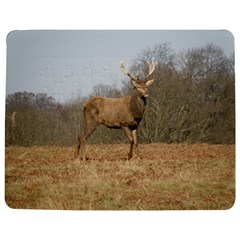 Red Deer Stag on a Hill Jigsaw Puzzle Photo Stand (Rectangular)