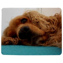 Red English Cocker Spaniel 2 Jigsaw Puzzle Photo Stand (Rectangular)