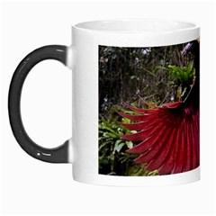 Cendrawasih Beautiful Bird Of Paradise Morph Mugs